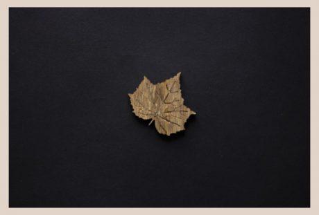 Una_Pagina_en_blanco_catalogo_AR_coleccion_permanente_broches_naturaleza_III_Arce