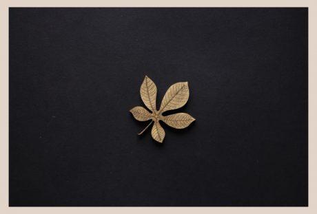 Una_Pagina_en_blanco_catalogo_AR_coleccion_permanente_broches_naturaleza_III_Castano
