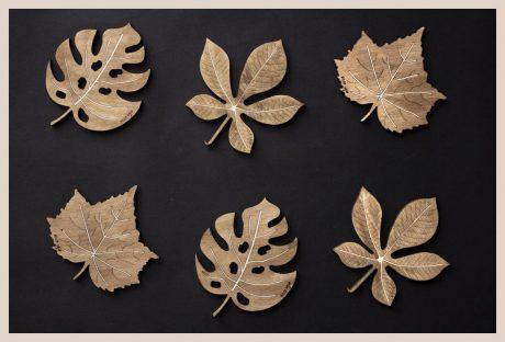Una_Pagina_en_Blanco_catalogo_AR_coleccion_permanente_posavasos_naturaleza_II