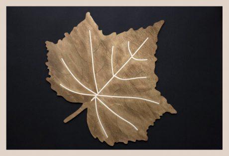 Una_Pagina_en_blanco_catalogo_AR_coleccion_permanente_bajoplatos_platos_centro_naturaleza_III_Arce